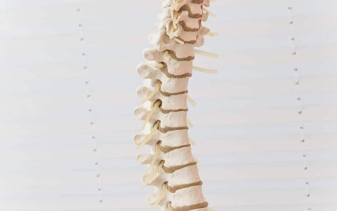 Chiropractic Treatments for Lumbar Pain